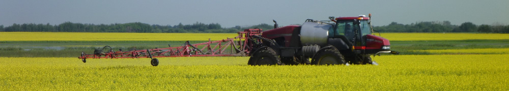 photo of sprayer in a flowering canola field